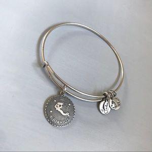 Alex and Ani Aquarius Charm Bracelet Silver